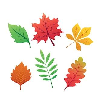 Clipart de vetor de coleção de folhas de outono
