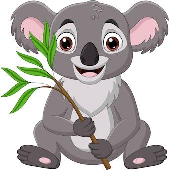 Coala de desenho animado, segurando um galho de árvore de eucalipto