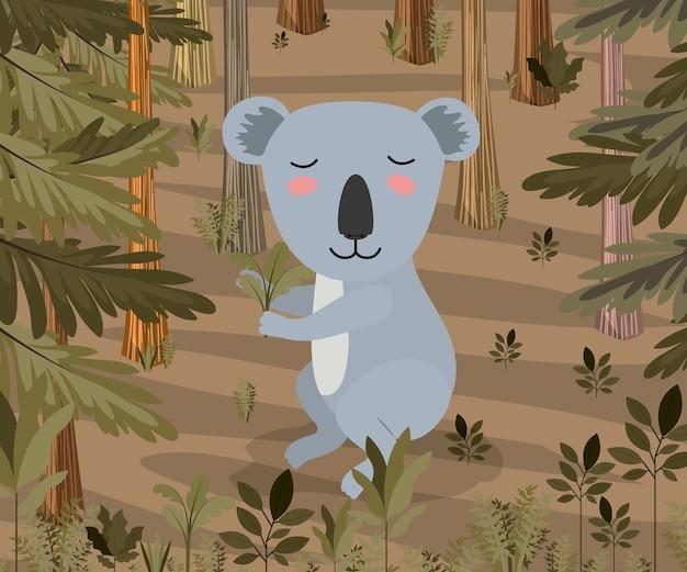 Coala na cena da floresta