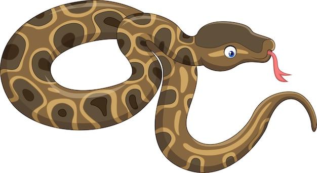 Cobra dos desenhos animados isolada no fundo branco