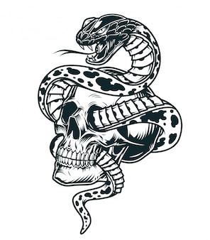 Cobra entrelaçada com modelo de caveira