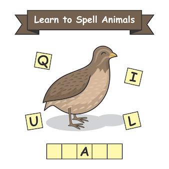 Codorniz aprenda a soletrar animais