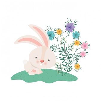 Coelhinho da páscoa com ícone isolado de flores