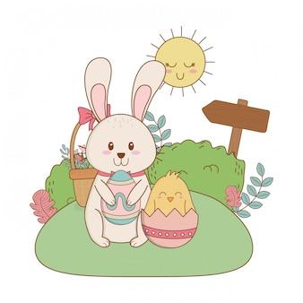 Coelhinho e chick com ovo pintado no jardim