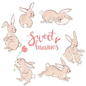 Coelhinhos doces, coleção bonito de personagem.