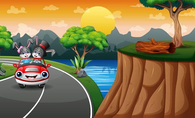 Coelhinhos dos desenhos animados, andando de carro ao longo da estrada