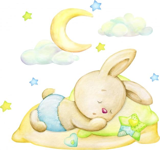 Coelho adormecido, lua, estrelas, nuvens. conceito de aquarela sobre um fundo isolado.