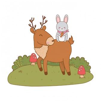 Coelho bonito e renas nos personagens da floresta de campo