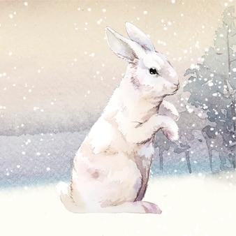 Coelho branco selvagem em um país das maravilhas do inverno