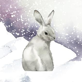 Coelho cinzento selvagem em um país das maravilhas do inverno