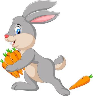 Coelho de desenho animado carregando cenouras