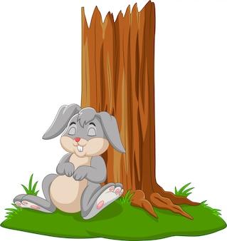 Coelho de desenho animado dormindo debaixo da árvore