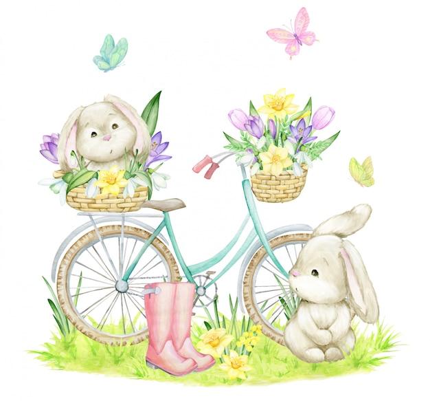 Coelhos, borboletas, uma bicicleta, flores, botas, cestas, grama. clipart aquarela