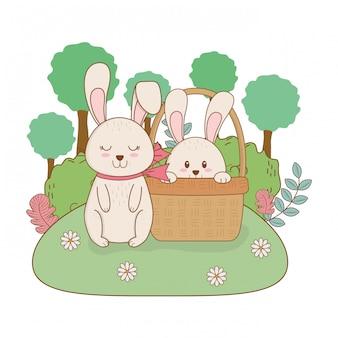 Coelhos pequenos na cesta no jardim