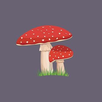 Cogumelo amanita com grama verde