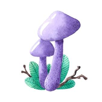 Cogumelo.