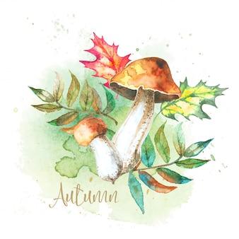 Cogumelos com folhas de outono