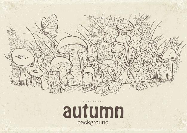 Cogumelos de outono e borboletas no circuito