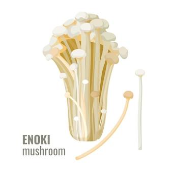 Cogumelos enoki vetor de cogumelo longo, fino e fino de agulha de ouro branco