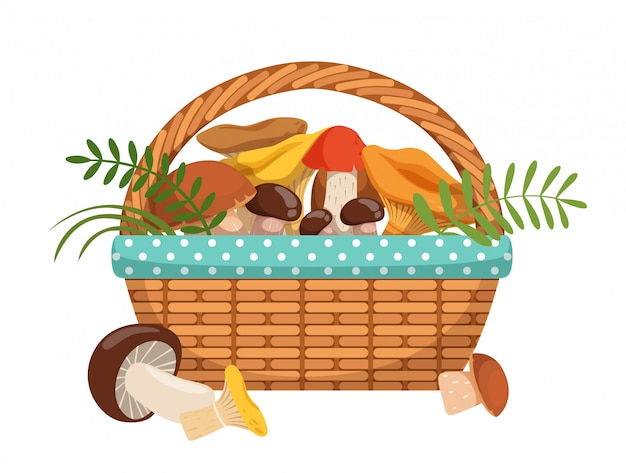 Cogumelos frescos diferentes na cesta. ilustrações vetoriais definidas no estilo cartoon.