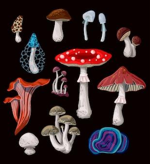 Cogumelos isolados em um fundo branco.