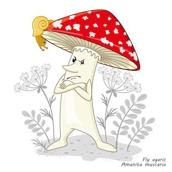 Cogumelos isolados no branco