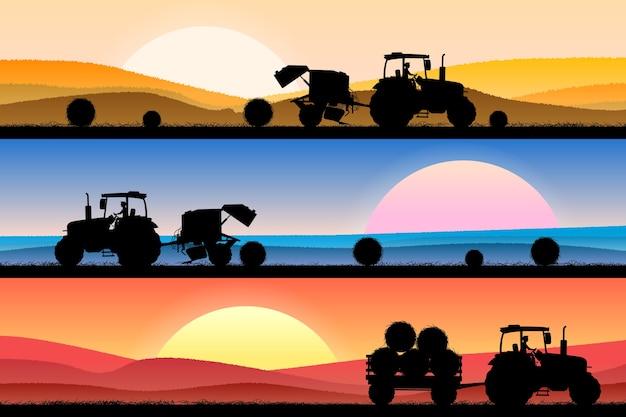 Colagem de um campo com trigo em diferentes momentos do dia