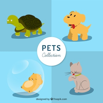 Coleção animais de estimação bonitos