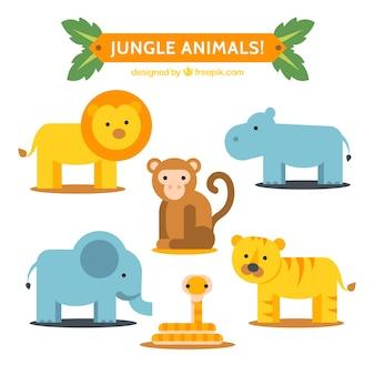 Coleção animal da selva