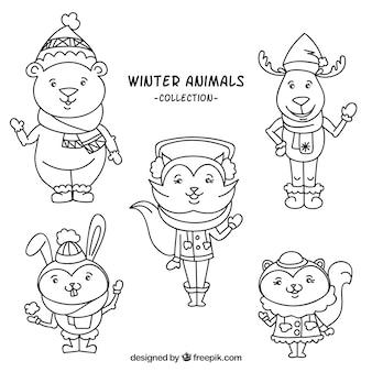 Coleção animal do inverno com roupas