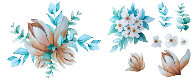 Coleção aquarela de flores