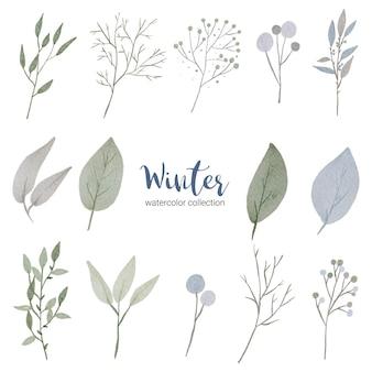 Coleção aquarela de inverno com vários tipos de folhas