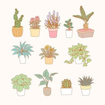Coleção atraente de vasos de plantas em estilo de linha