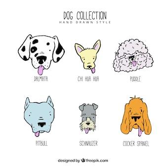 Coleção bonito de cães desenhados à mão