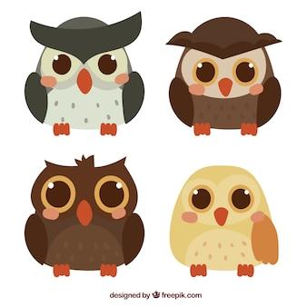 Coleção bonito de corujas de desenhos animados