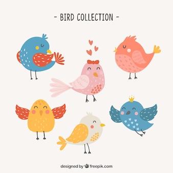 Coleção bonito de pássaros desenhados a mão