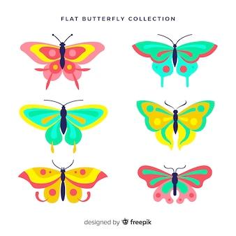 Coleção borboleta plana