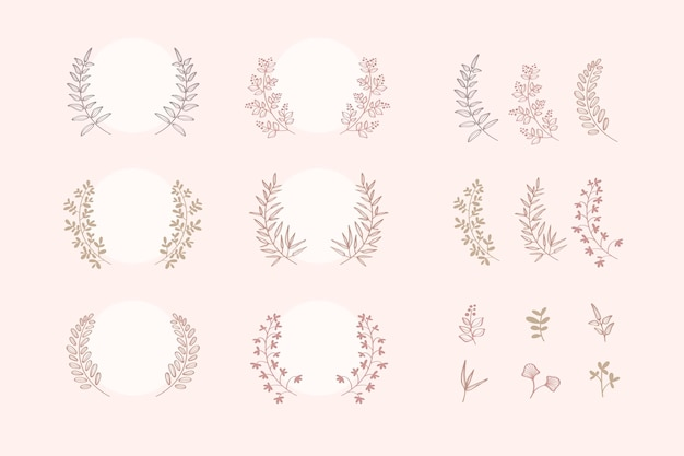 Coleção botânica de coroa de louros
