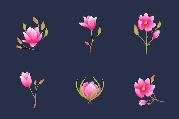 Coleção botânica de lindos ramos de flores desabrochando, composições boêmias elegantes