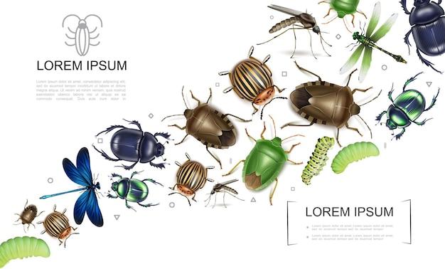 Coleção colorida de insetos realistas com mosquito escaravelho e percevejos do colorado besouro da batata, libélulas, lagartas