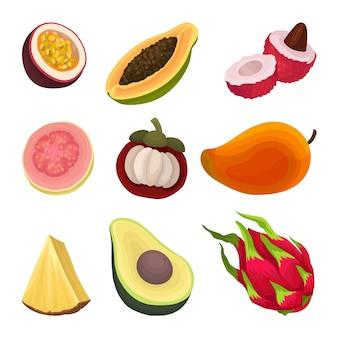 Coleção colorida de várias frutas exóticas. metade do mamão, abacate, goiaba, mangostão. pitaya inteiro,