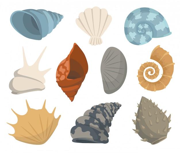 Coleção colorida do ícone subaquático das conchas do mar tropical. marine conjunto adesivos bonitos no fundo branco. ilustração.