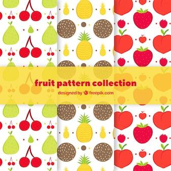 Coleção colorida do teste padrão do fruto