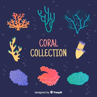 Coleção coral