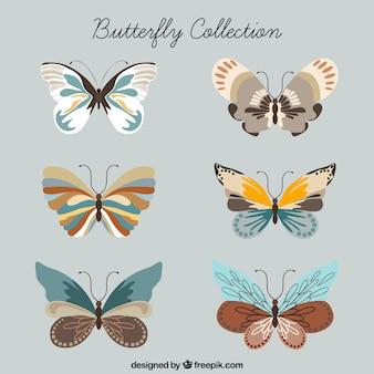 Coleção da borboleta