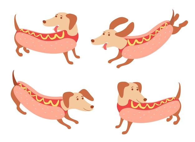 Coleção dachshunds feliz