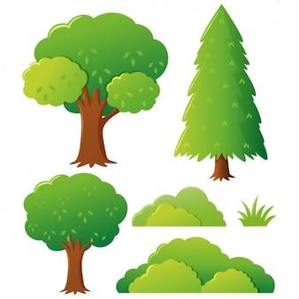 Coleção das árvores colorido