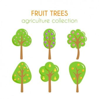 Coleção das árvores de fruto