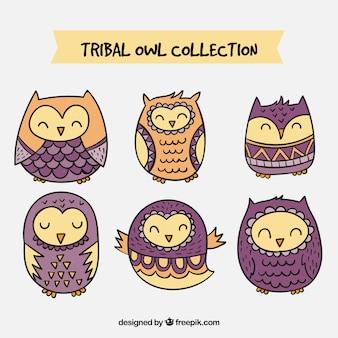 Coleção das corujas tribais roxas