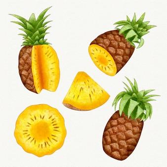 Coleção de abacaxi